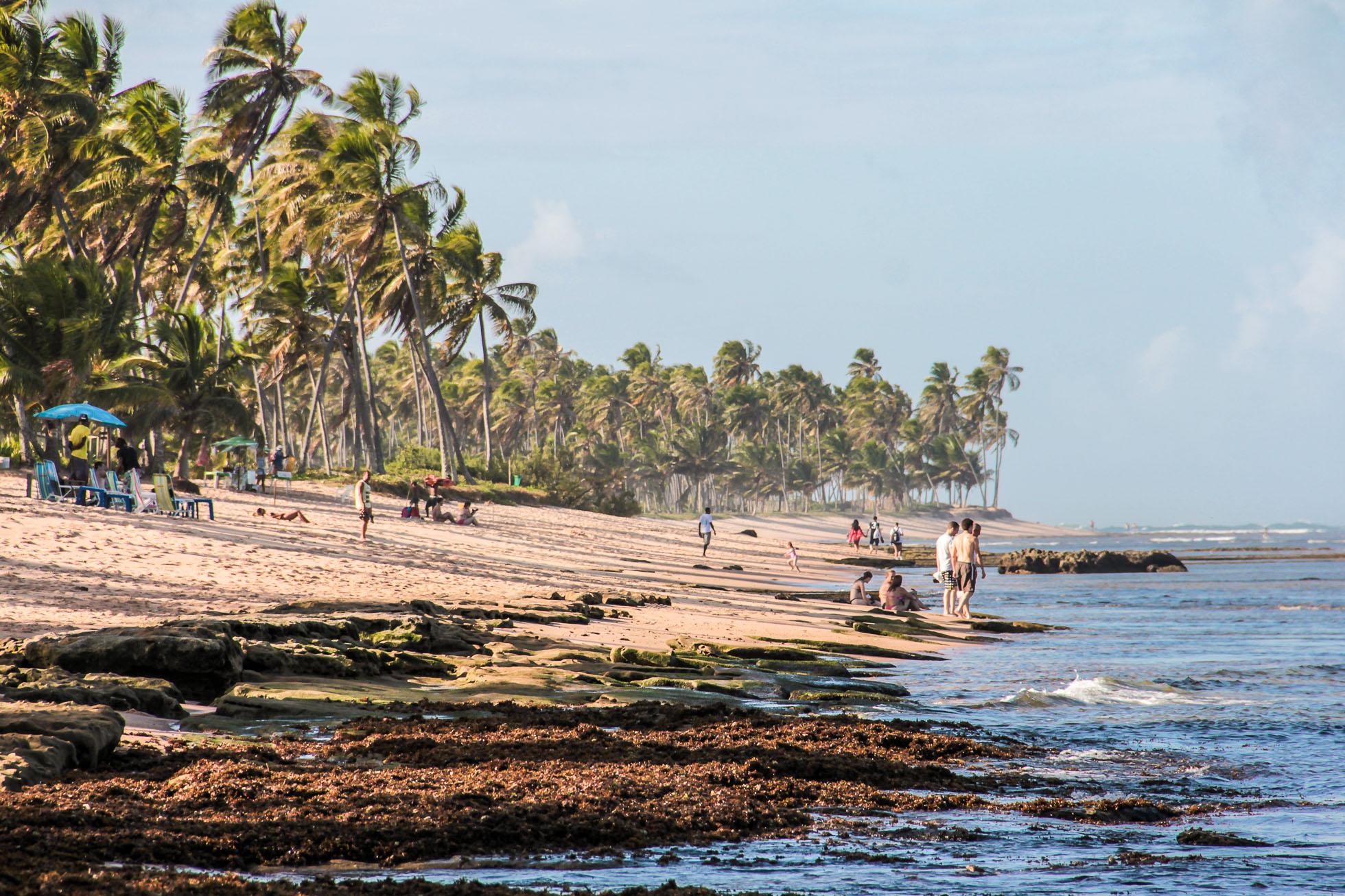 Praia do Forte à Bahia