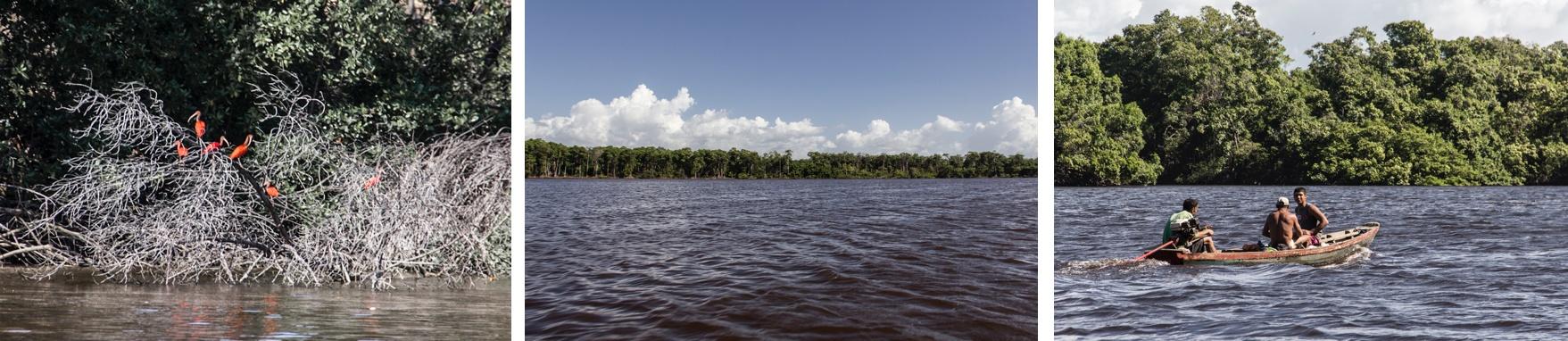 Des Guaras et des pêcheurs sur le fleuve Preguiças. Sur la Route des Sensations.