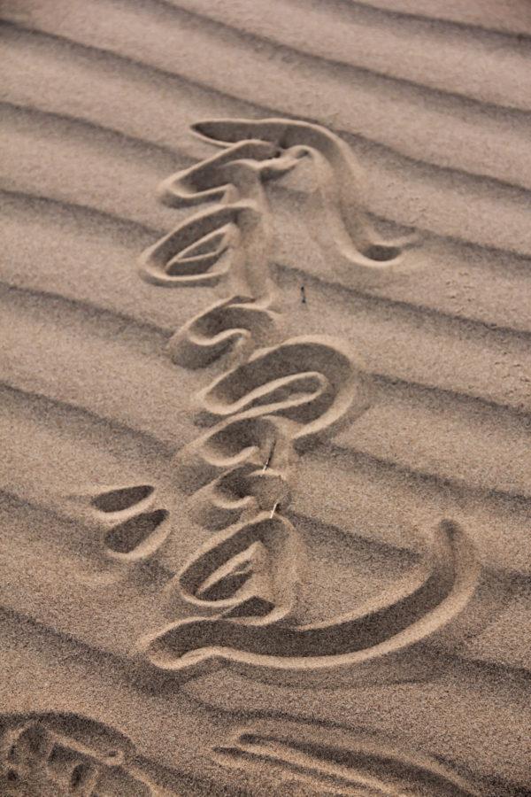Le mot Mongolia écrit sur le sable en caractères mongols