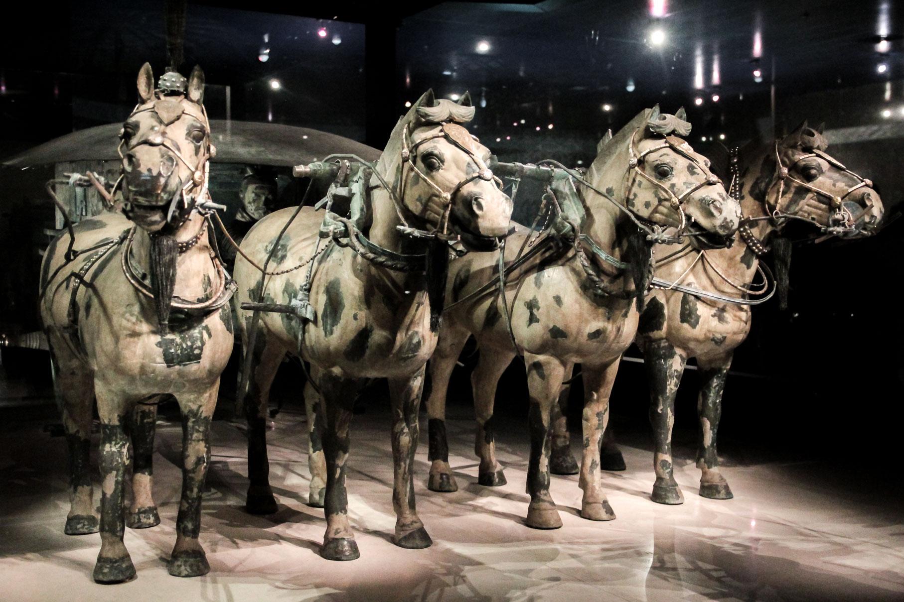 Chevaux en bronze au Musée de l'Armée de Terre Cuite en Chine