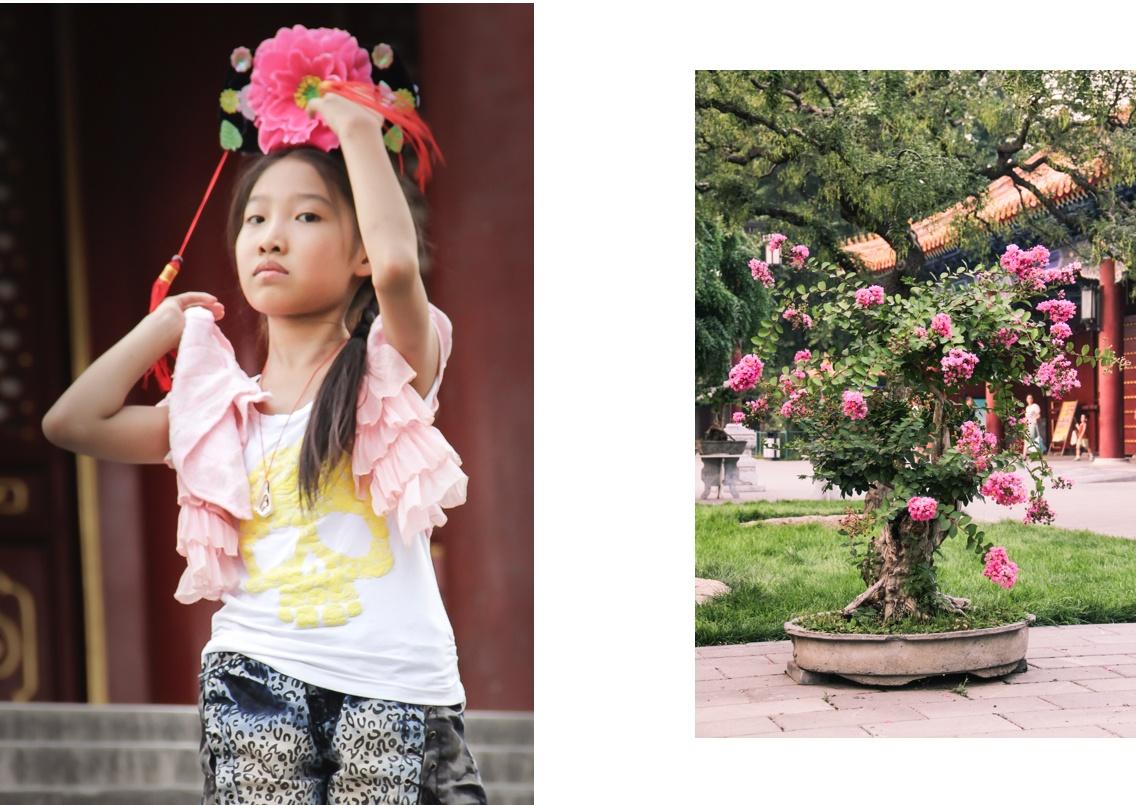 Une fillette et un rosier dans le Parc Jingshan à Pékin.