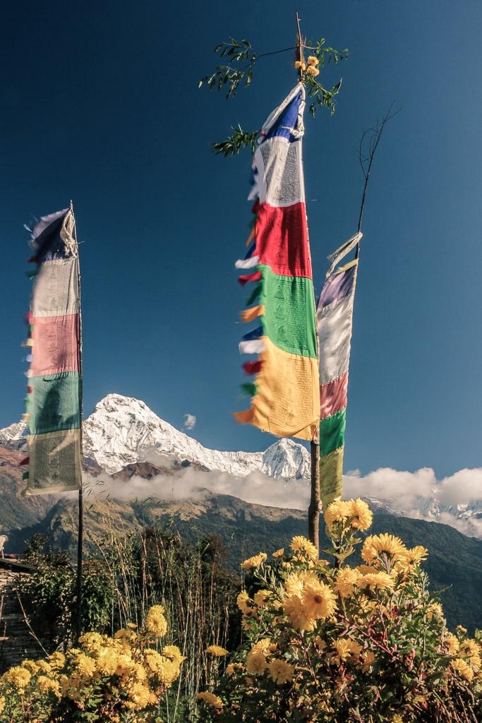 L'annapurna sur le Trek de Poon-Hill
