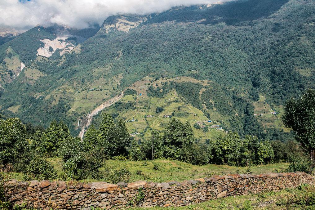 Chemin sur le trek Poon-Hill