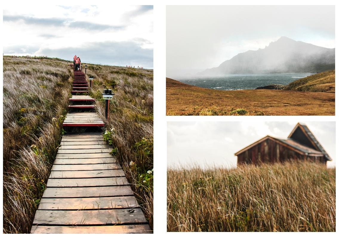 Débarquement sur l'île Horn avec des zodiacs. Croisière en Patagonie.