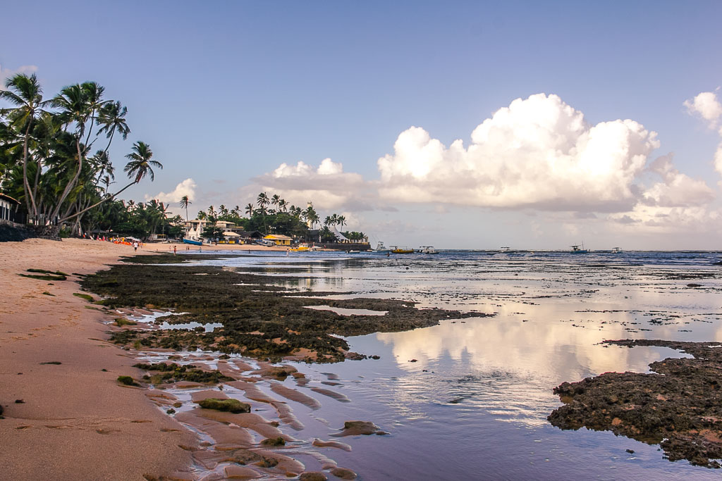 Plage avec des coraux à Praia do Forte, Bahia