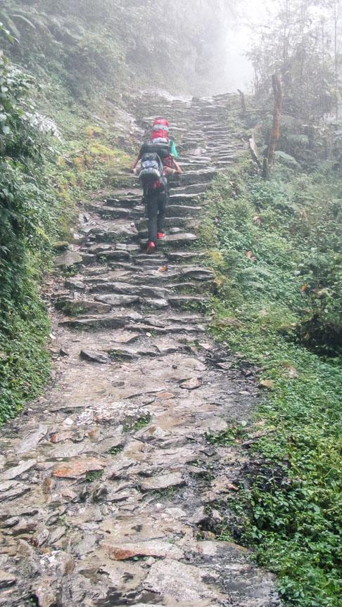 Il pleut sur le trek de Poon-Hill
