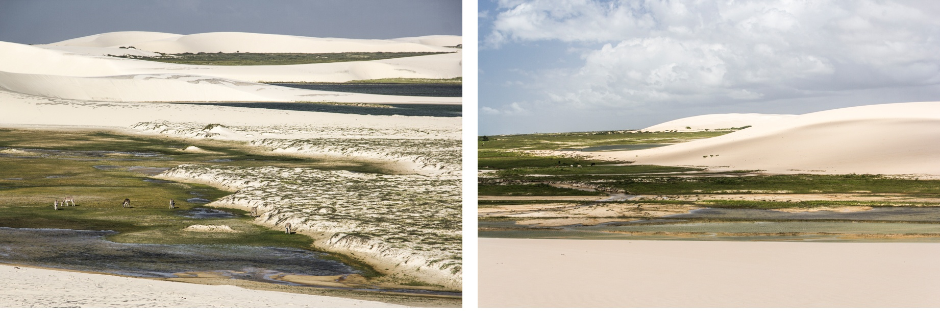 Les dunes aux alentours de Jericoacoara. Route des Sensations.