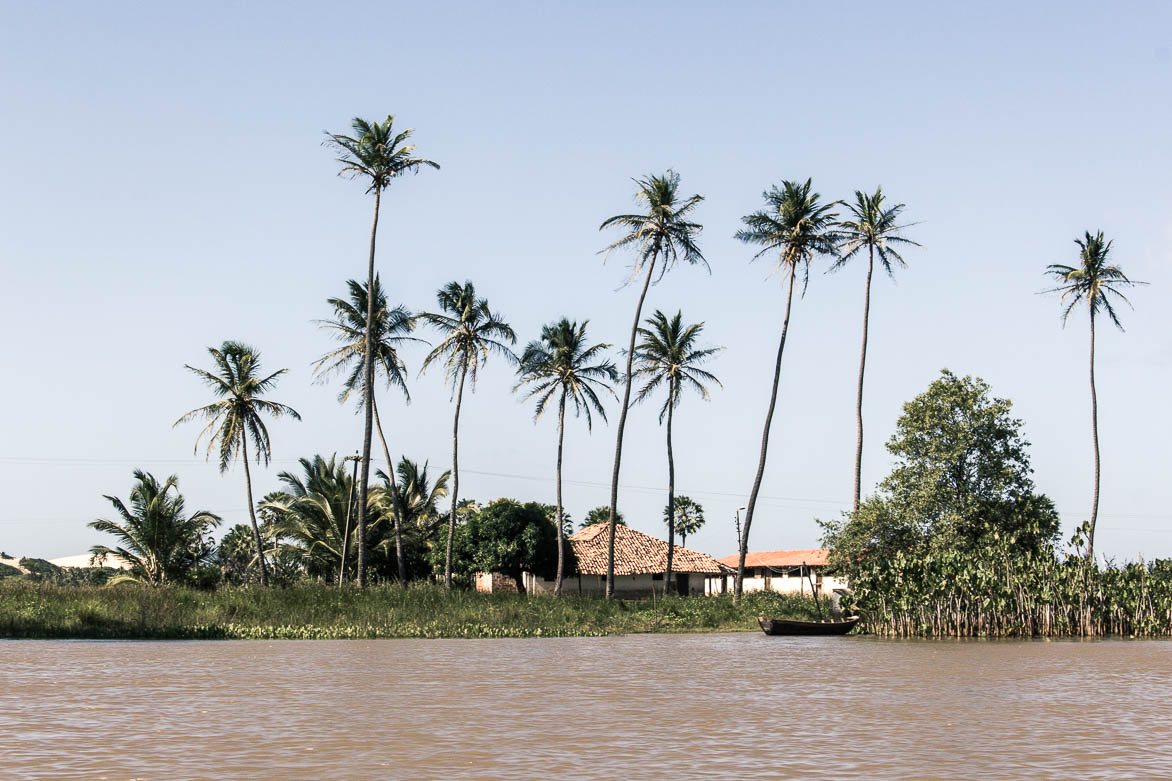 Une rive du flauve Parnaiba - Route des sensations