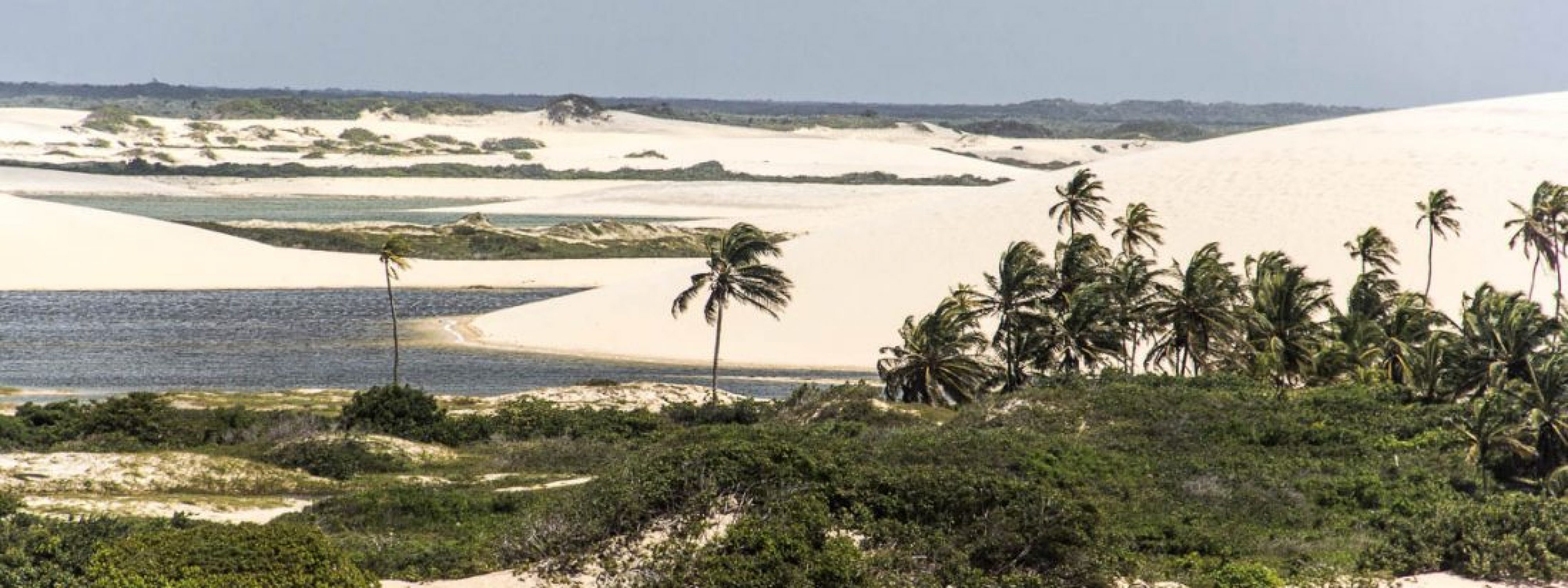 Sur la Route des Sensations, au pays des dunes