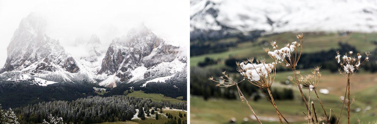 Alpe di Siusi dans les Dolomites.