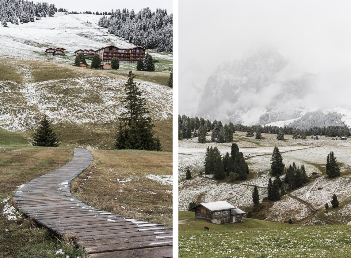 Alpe di Siusi. Alpage dans les Dolomites.