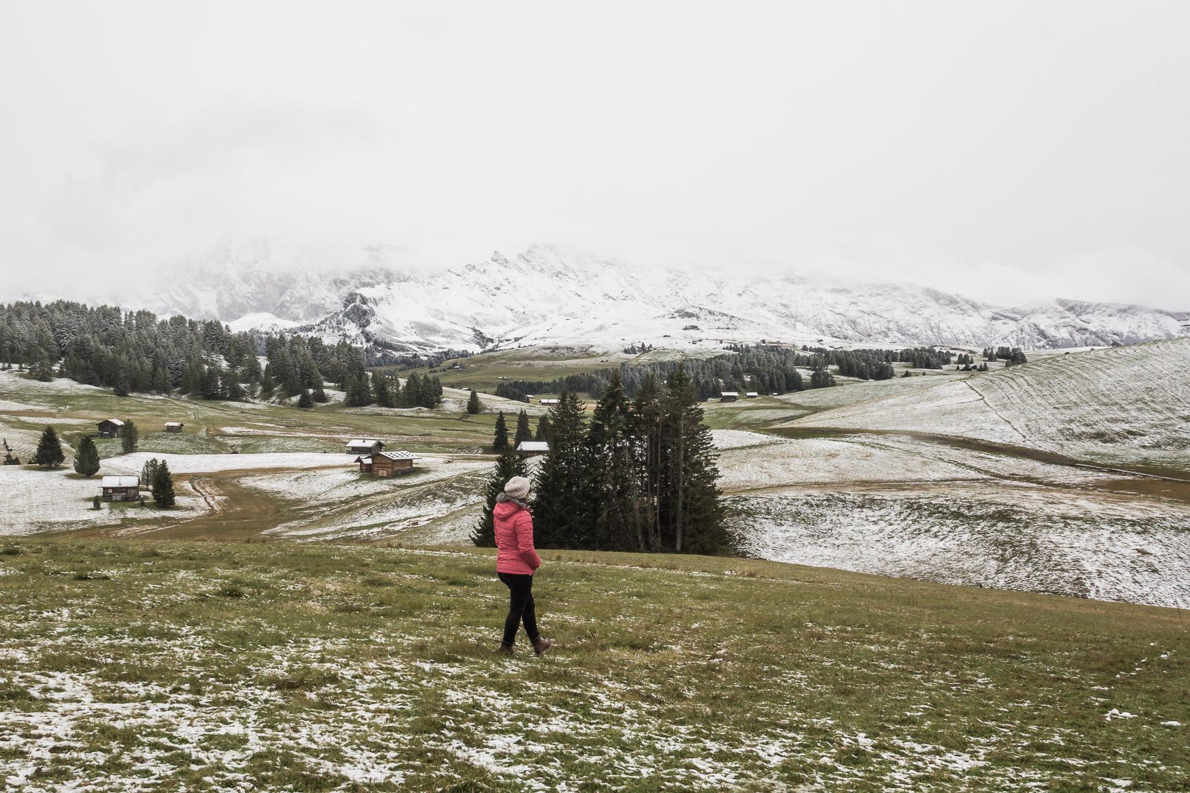 Alpe di Suisi- Dolomites