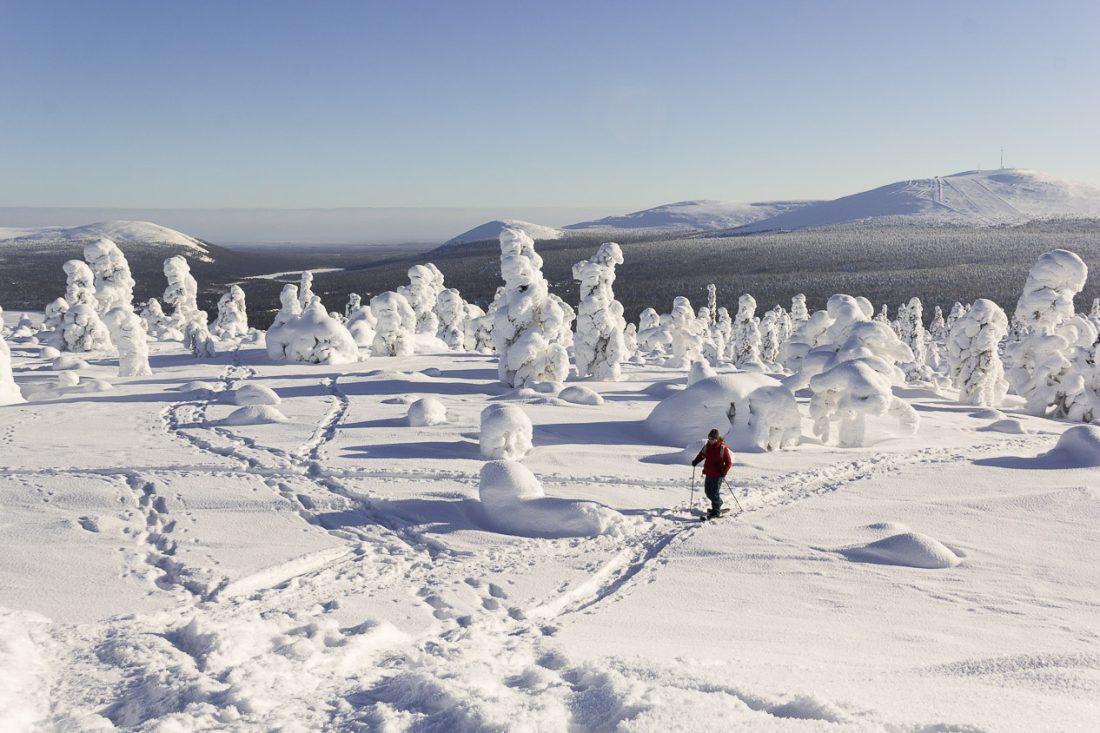 Sommet d'une colline en Laponie.