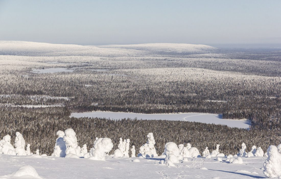 Vue du haut d'une colline en Laponie.