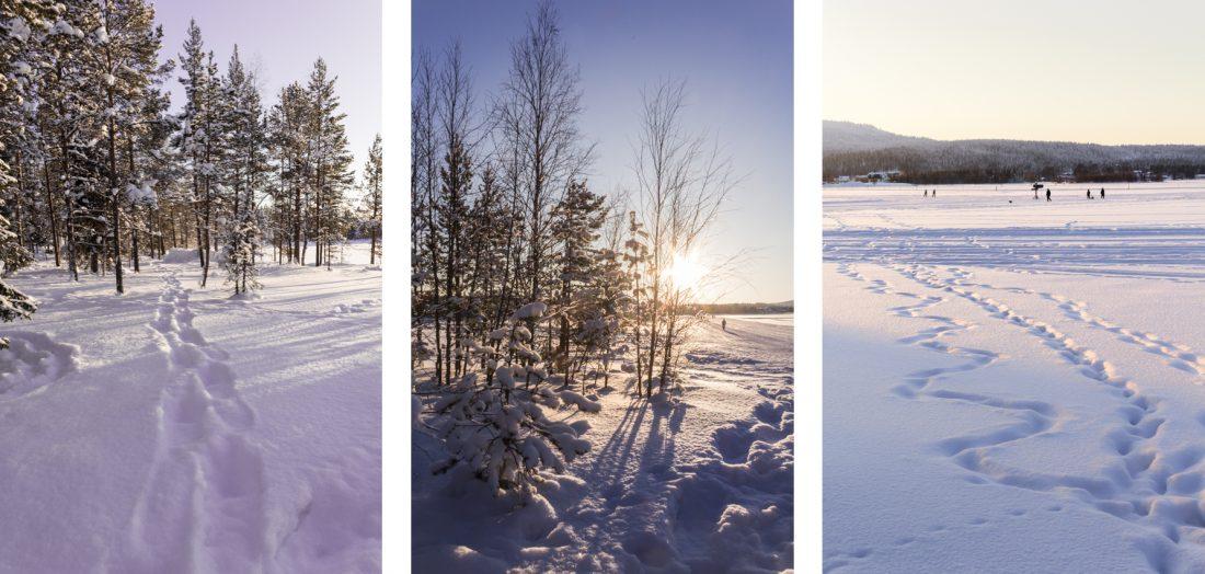 Scènes de neige en Laponie finlandaise.