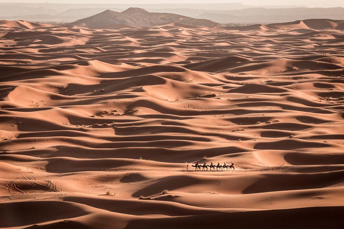 Plan large sur les dunes du désert de Erg Chebbi au Maroc. Une caravane de six chameaux traversent le désert.